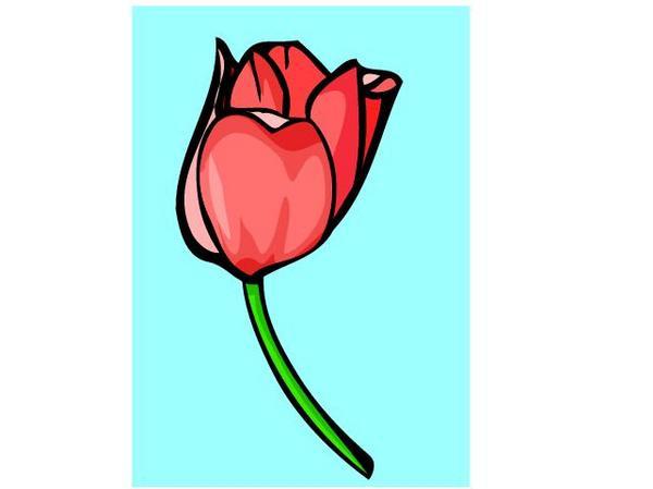 flowers clip art. Tulip Clip Art